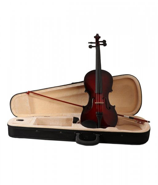 Procraft VS1 Acoustic Violin