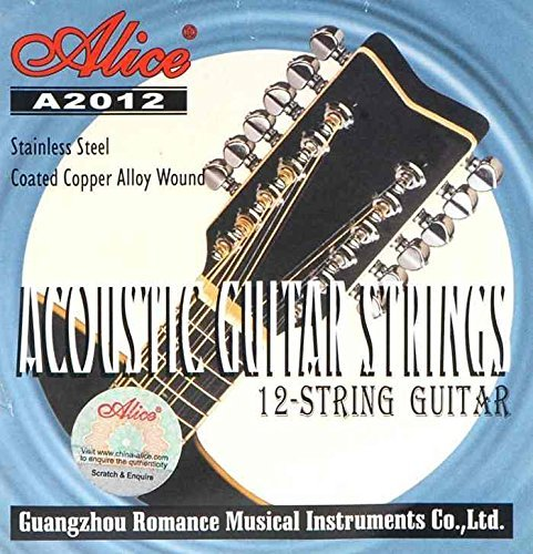 guitar strings for 12 string guitar online in India