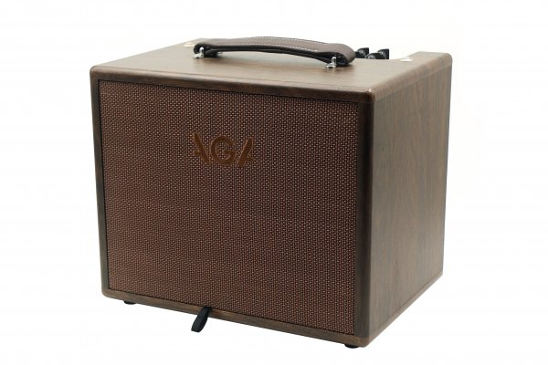 AGA SC100 Acoustic Guitar Amplifier