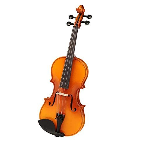 Havana MV1412F Violin with Ebony Pegs